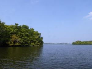 1611-paseo-por-rio-y-laguna-madu