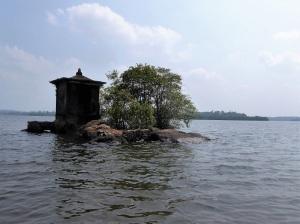 1638-paseo-por-rio-y-laguna-madu