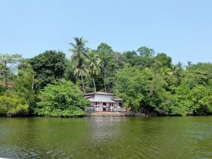 1650-paseo-por-rio-y-laguna-madu