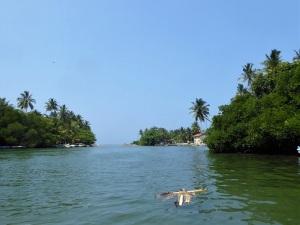 1679-paseo-por-rio-y-laguna-madu