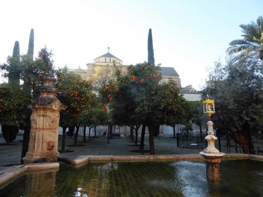349-cordoba-mezquita-patio-de-los-naranjos