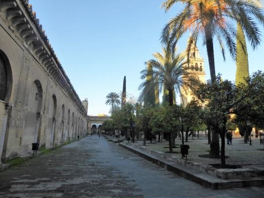 352-cordoba-mezquita-patio-de-los-naranjos