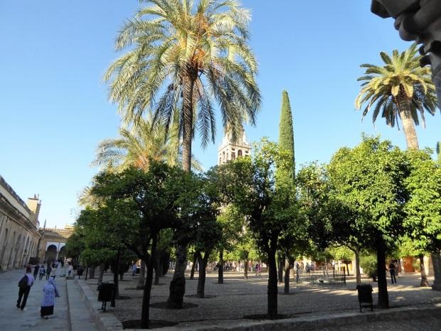 1014. Córdoba