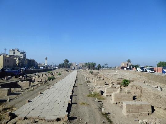 083. Avda. de las Esfinges entre los templos de Karnak y Luxor