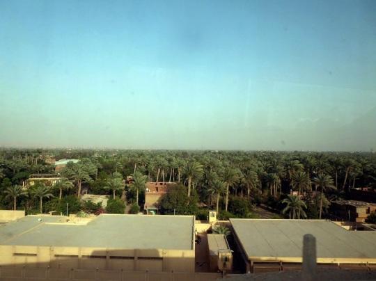 1012. Dejando Saqqara
