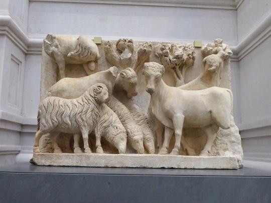 104. Museo della Opera del Duomo. Rebaño de ovejas y bueyes, procedente de una Anunciación a los pastores. Arnolfo di Cambio. 1296-1300