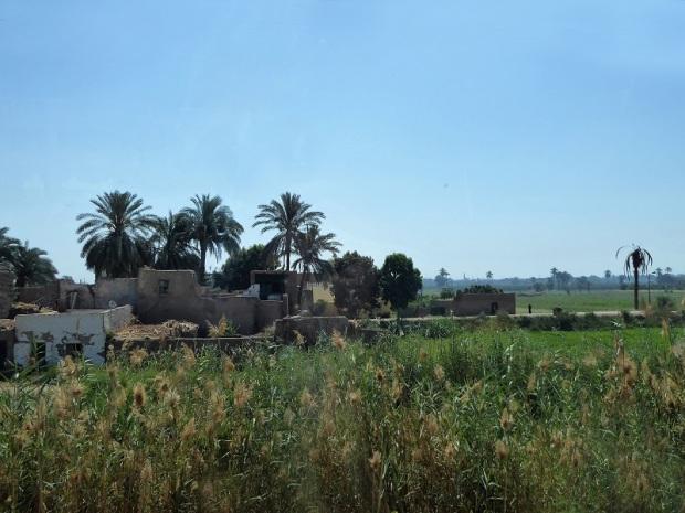 130. Luxor. Orilla oeste