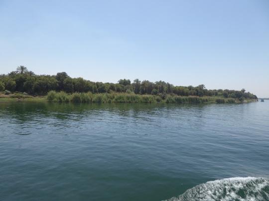 319. Navegando por el Nilo