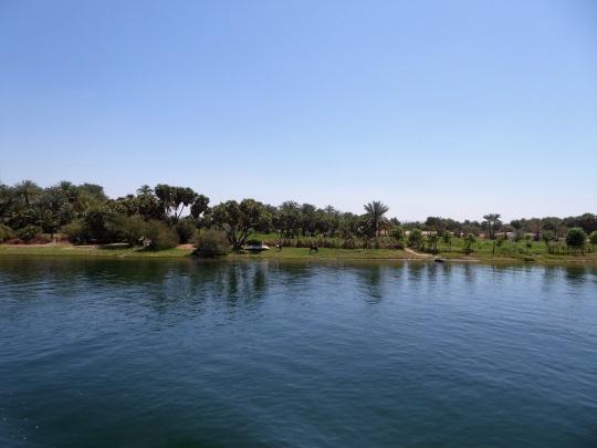323. Navegando por el Nilo