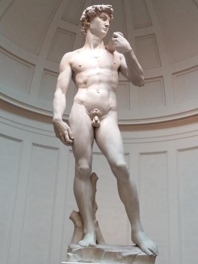 444. Accademia. David