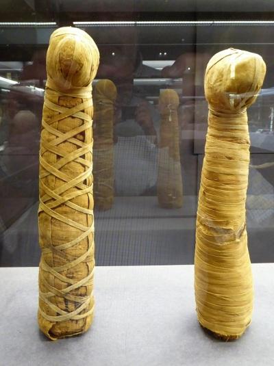 467. Museo arqueológico. Momias de animales, en este caso cánidos. Entre 672-332 a. C., época en que se difundió esta práctica.