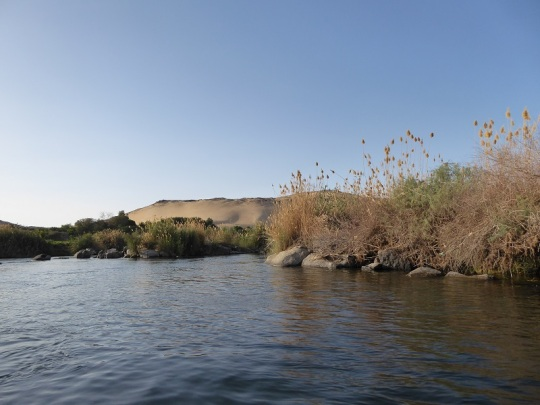 591. Paseo en barca alrededor de la isla Elefantina