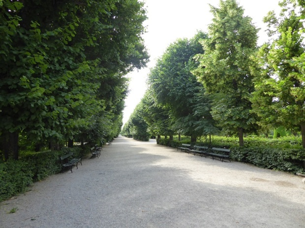 360. Schönbrunn. Jardines