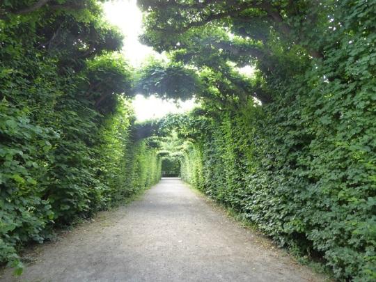 365. Schönbrunn. Jardines