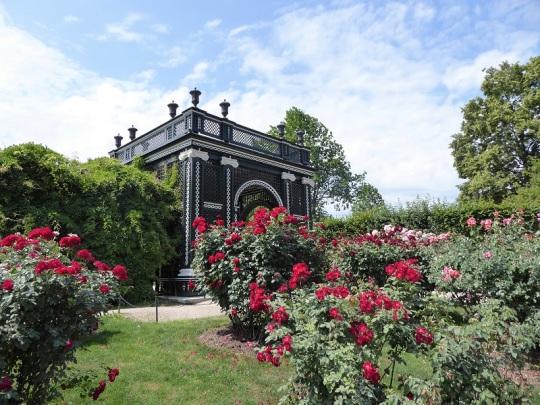 386. Schönbrunn. Jardines