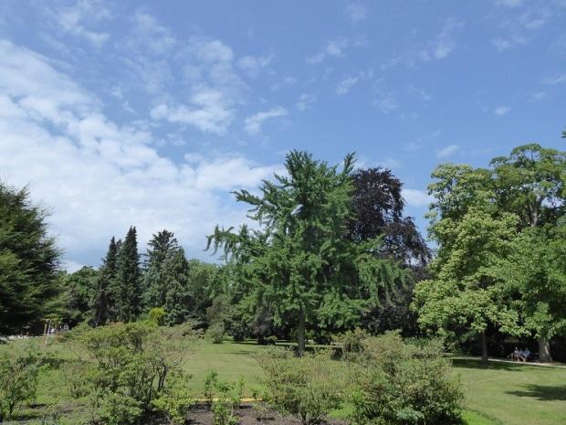 387. Schönbrunn. Jardines