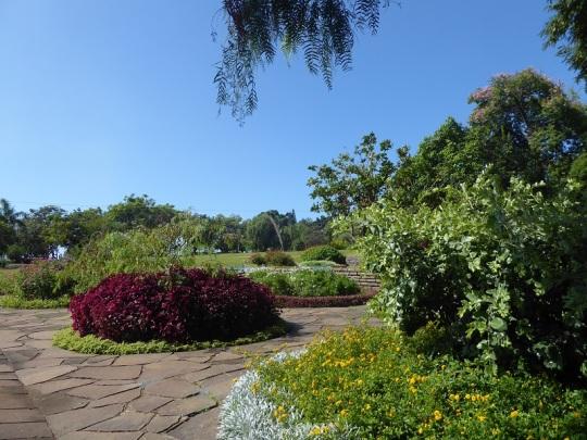 100. Funchal. Parque de Santa Catalina