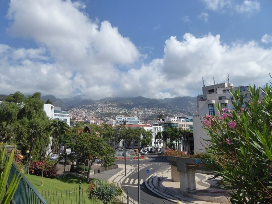102. Funchal. Parque de Santa Catalina