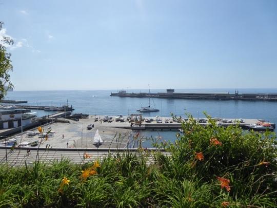 105. Funchal. Parque de Santa Catalina