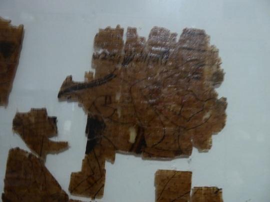 113. Museo Egipcio. Papiro satírico, conocido como papiro erótico. Imperio Nuevo. XX dinastía. 1186-1076 a. C. Deir el-Medina