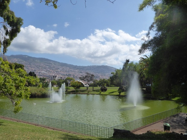 115. Funchal. Parque de Santa Catalina