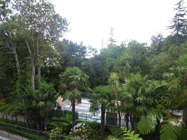 148. Funchal. Jardín botánico.