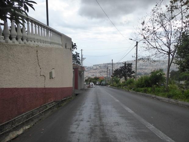 160. Funchal. Carros de cesto