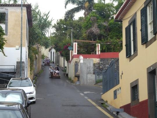 168. Funchal. Carros de cesto