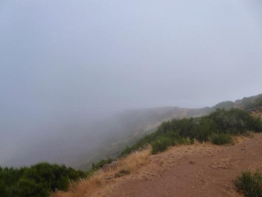 244. Desde Arieiro. Niebla y poco más