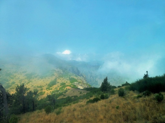 245. Bajando del pico de Arieiro