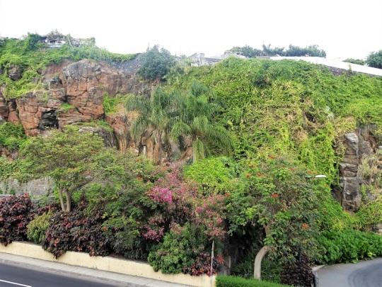 27. Funchal
