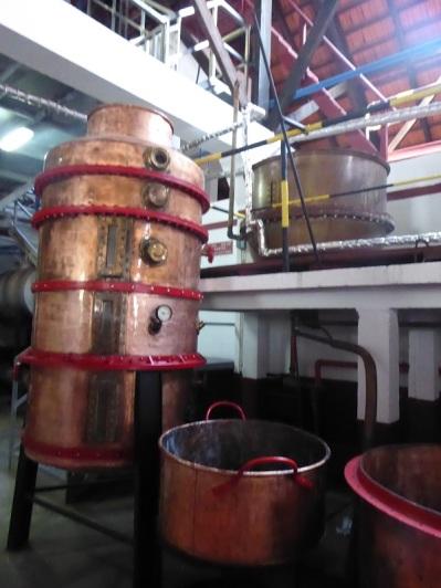 290. Porto da Cruz. Destilería azúcar de caña