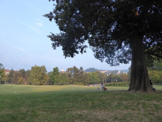 431. Parco del Valentino