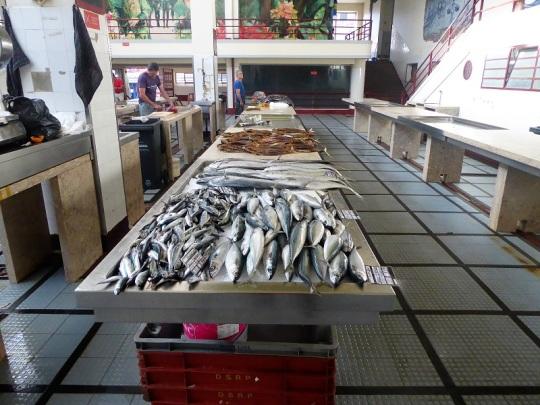 65. Funchal. Mercado central